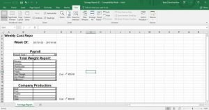 optomeat tonnage report, custom meat processing software